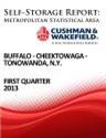 Picture of Buffalo-Cheektowaga-Tonawanda, N.Y. - First Quarter 2013
