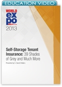 Picture of Self-Storage Tenant Insurance: 39 Shades of Grey and Much More